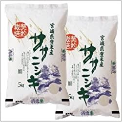 令和1年 宮城県登米産 ササニシキ