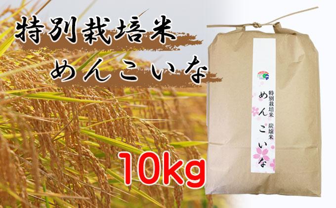 特別栽培米 炭譲米 めんこいな