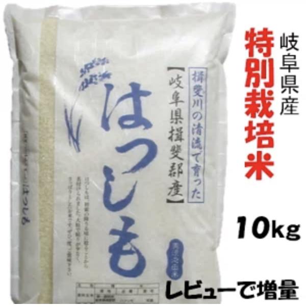 特別栽培米 岐阜県産 ハツシモ