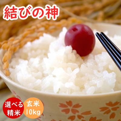 結びの神 令和元年産 玄米