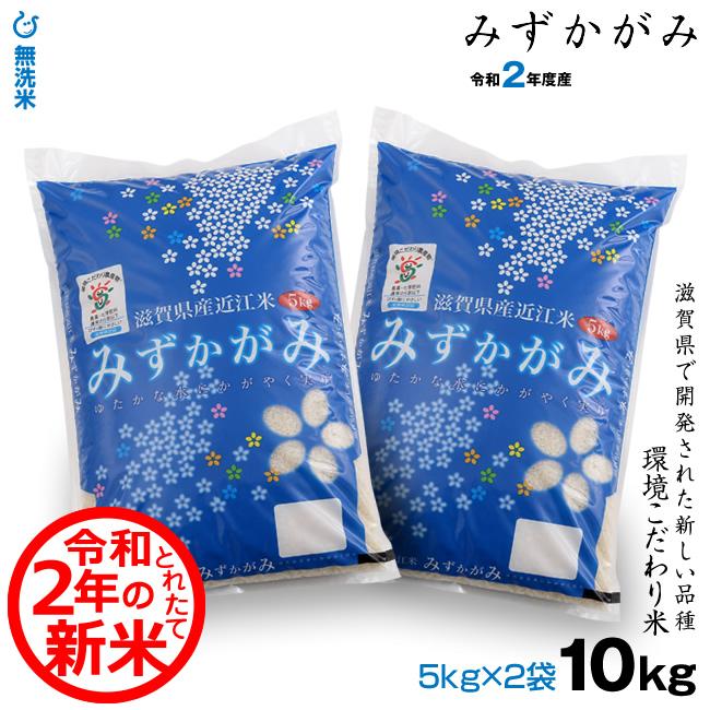 滋賀県産 特別栽培米 みずかがみ玄米